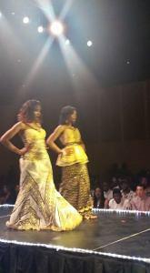 africian show 3